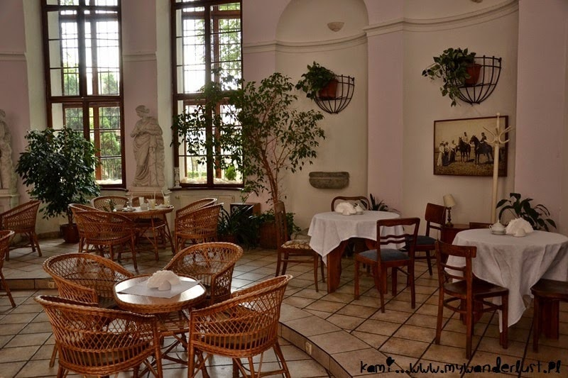 cafe-muzeum