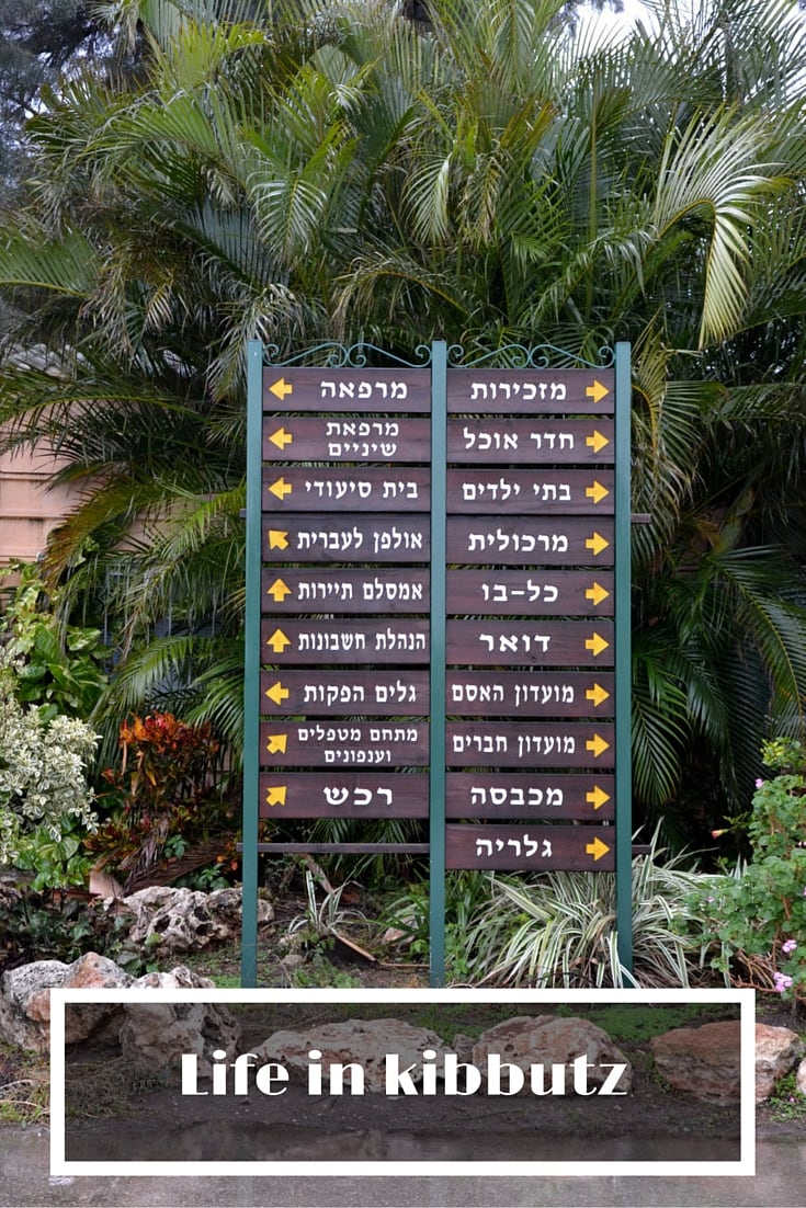 kibbutz pin (2)