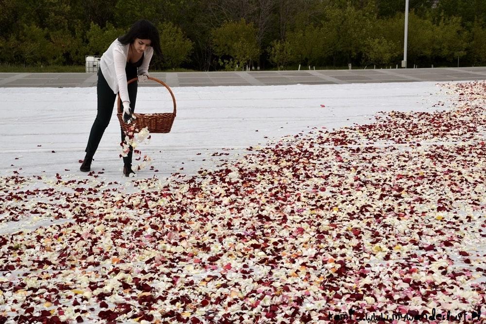 flower recycling at Tsitsernakaberd