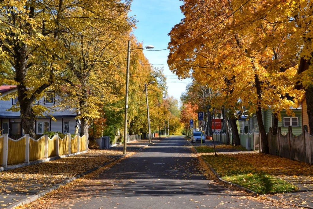 autumn in Estonia