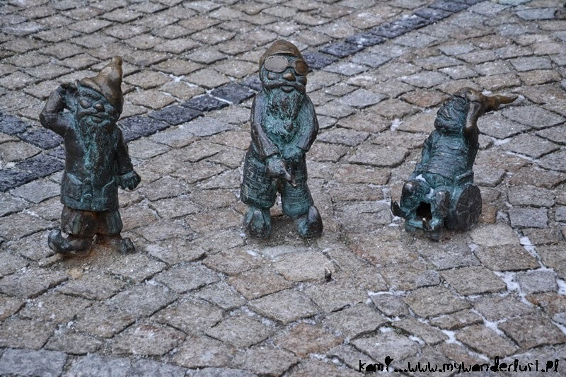 disabled dwarves in Wrocław