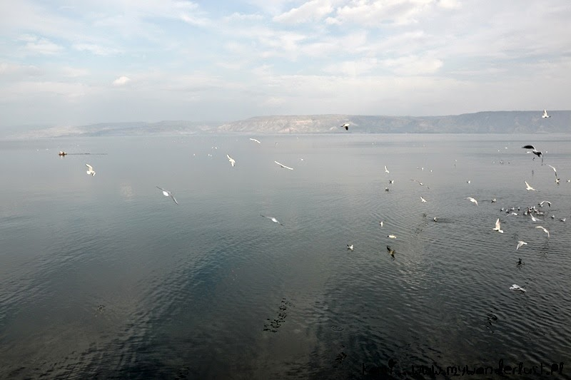 shores of the Sea of Galilee