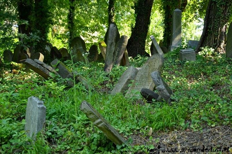 Jewish cemetery in Cieszyn
