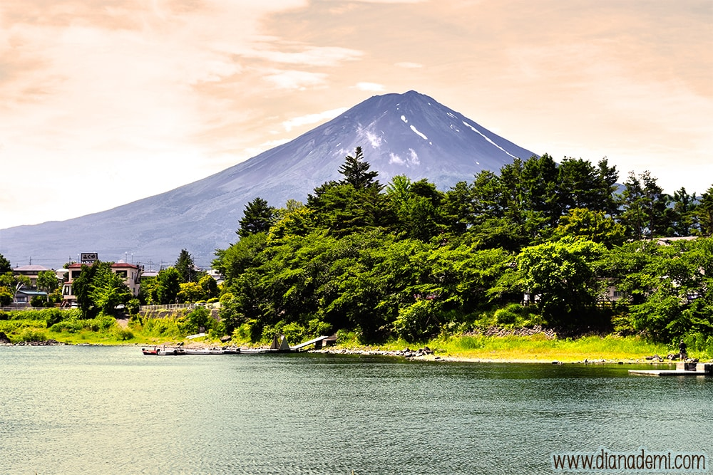 Mt Fuji_dianademi