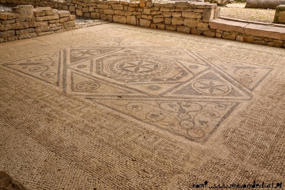 Risan mosaics