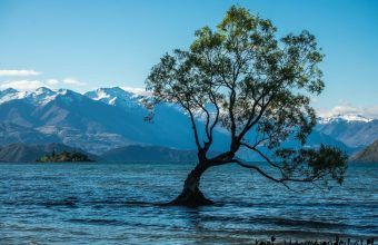 10 days New Zealand itinerary, without renting a car