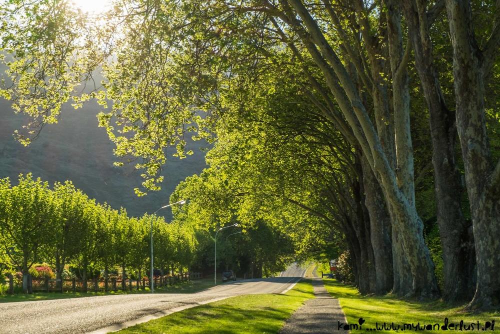 10 days in New Zealand itinerary - Wanaka