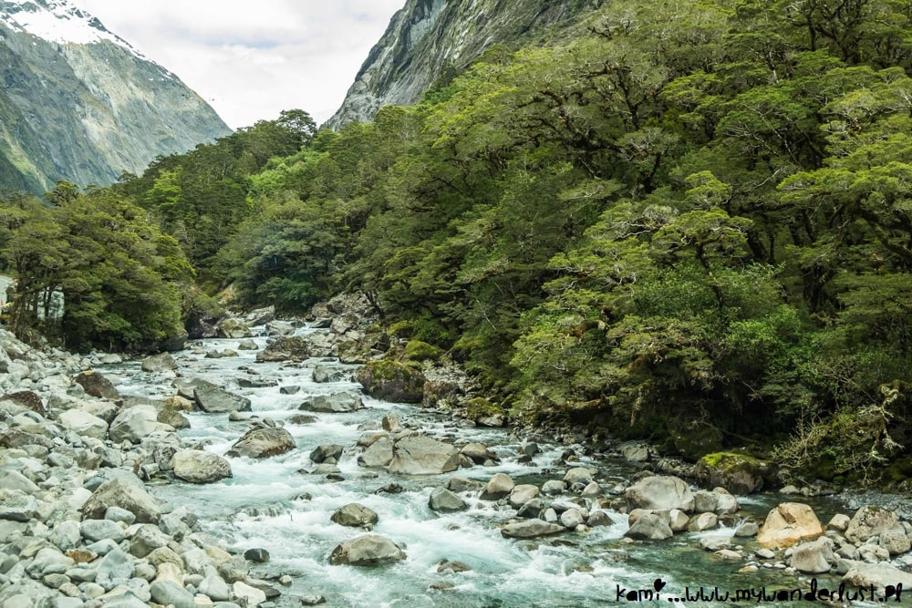 10 days in New Zealand itinerary - Milford Sound tour