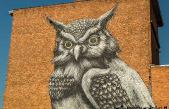 Amazing street art in Hasselt, Belgium
