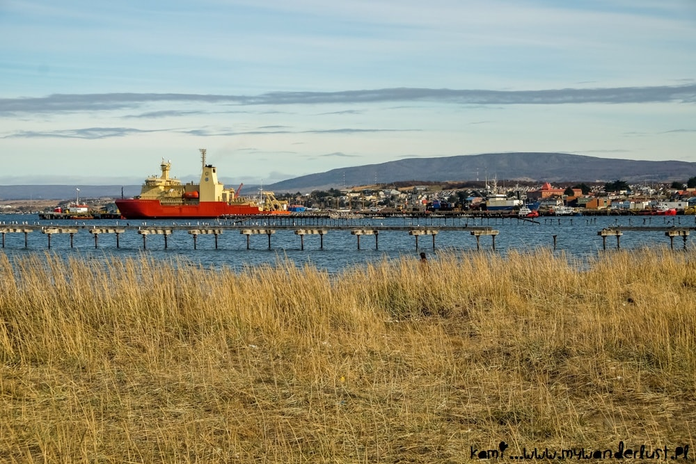 things to do in Punta Arenas Chile