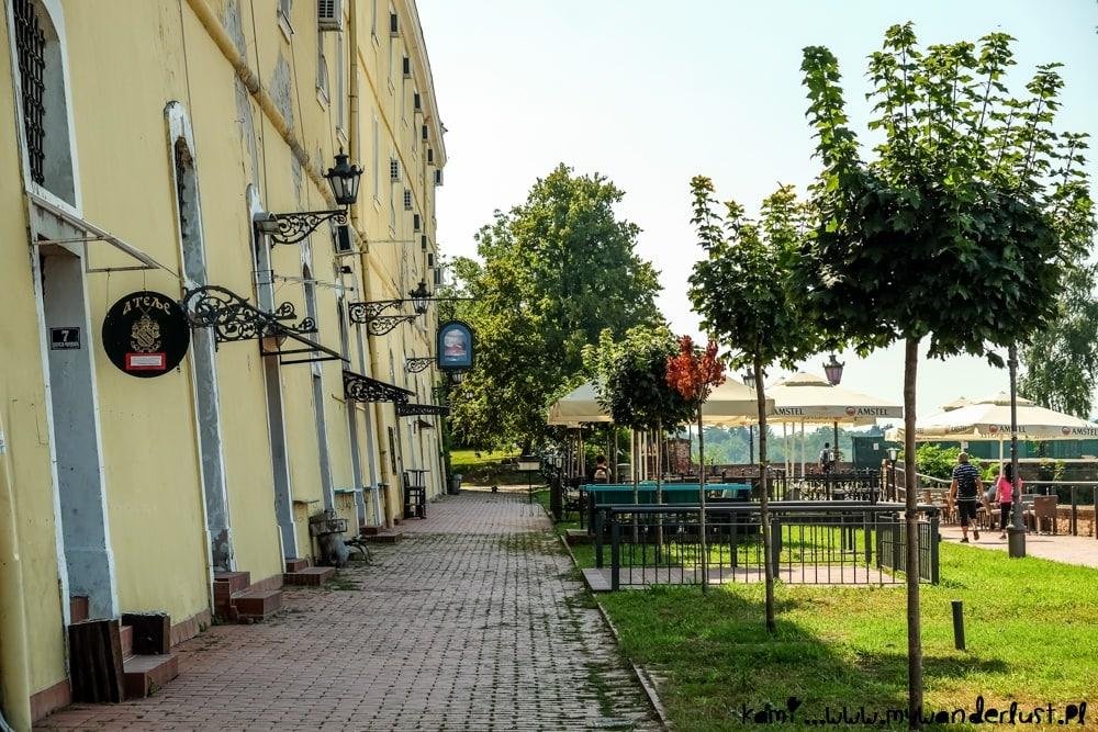 things to do in novi sad serbia