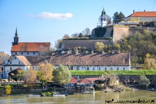 things to do in novi sad serbia